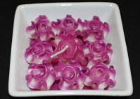 Purple_roses_can_5018bd040d4db.jpg